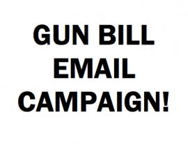 Oppose the HF517 Gun Bill