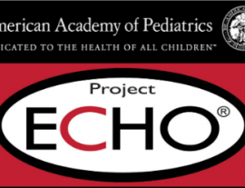 AAP Environmental Health ECHO